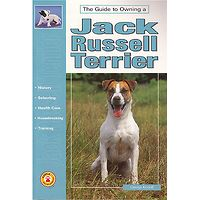 Jack Russell Terrier - Guide to Owning