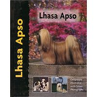 Lhasa Apso - Pet Love