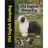 Old English Sheepdog - Pet Love