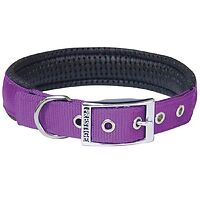 "Soft Padded Collars 1"" Purple"